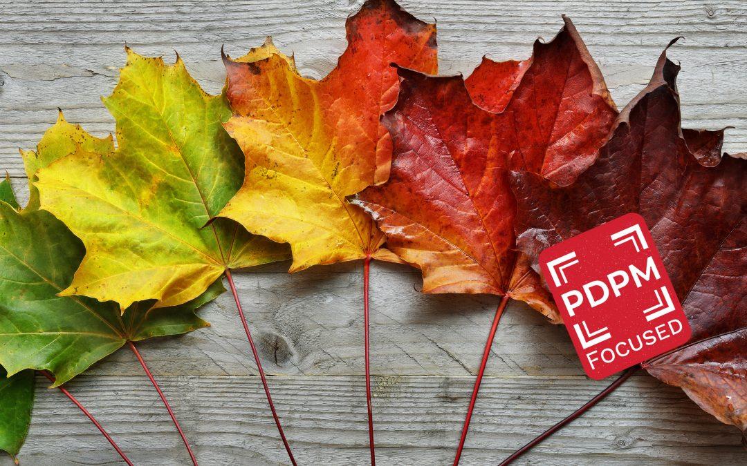 Post-Acute Care: A Season of Change